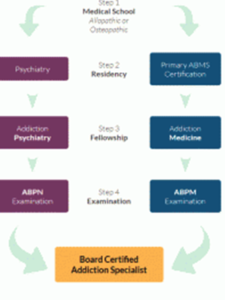 What is the Substance Use Disorder / Addiction Medicine Subspecialty? A Technical Review